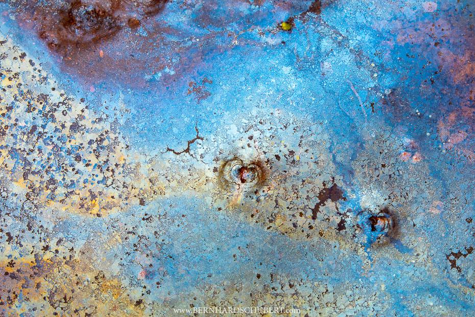 Bacteria film