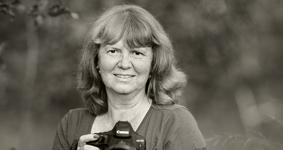Karin Rollett-Vlcek