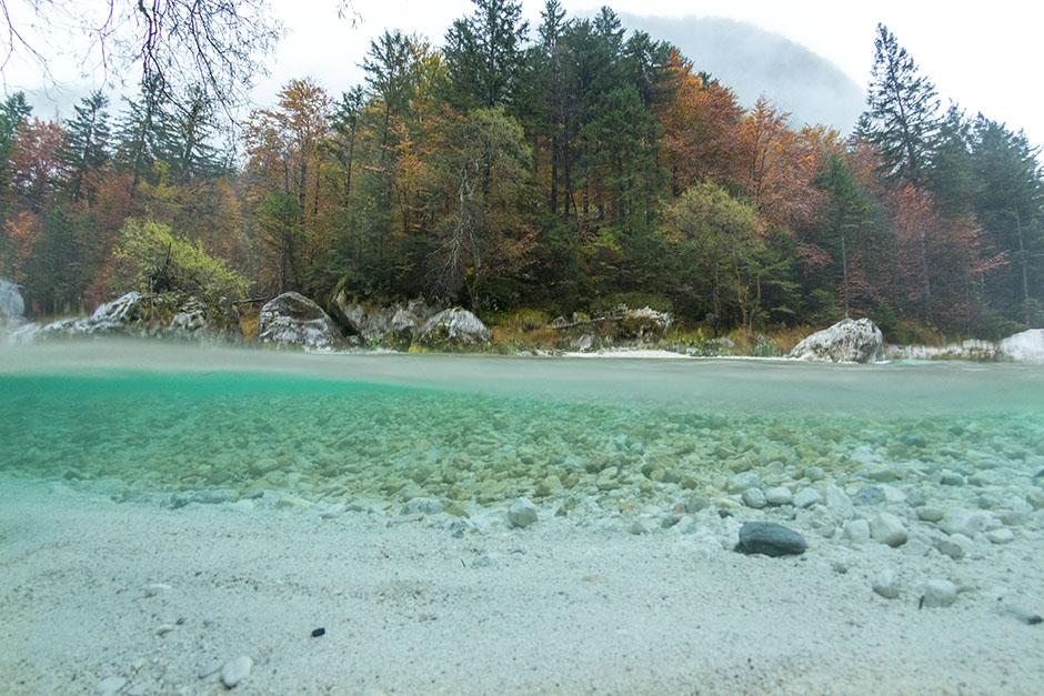 Split autumn