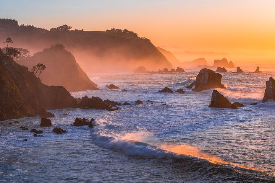 Golden Coastline