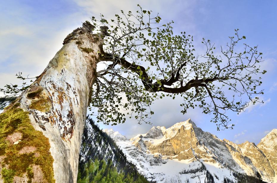 Nature Park Karwendel