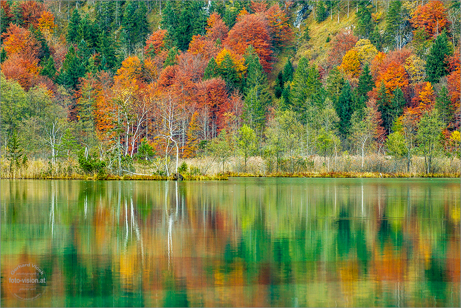 Only autumn colors