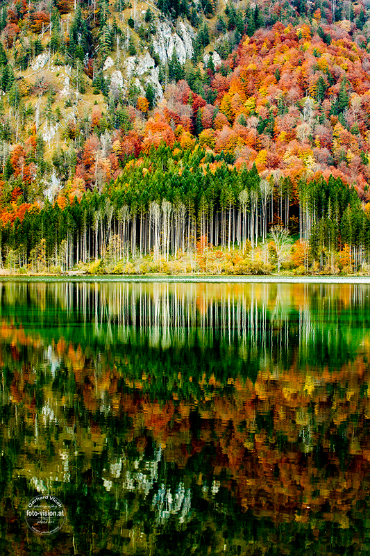 Autumn mirror
