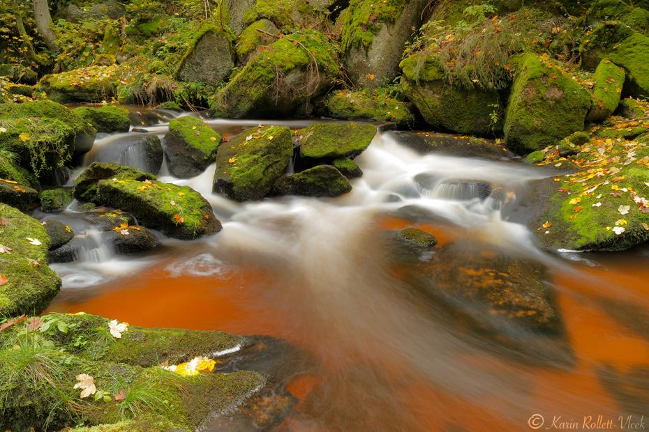 mystical Wald4tel