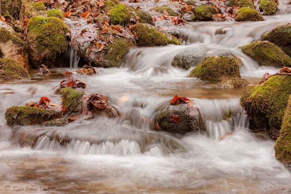 autumn waterworld